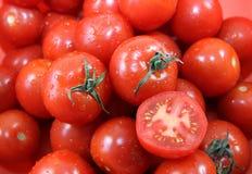 Pomodori freschi rossi Fotografia Stock