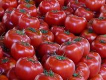 Pomodori freschi su una stalla di via Immagine Stock