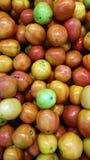 Pomodori freschi sul mazzo della drogheria Fotografie Stock