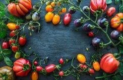 pomodori freschi sul ramo con le foglie, sul fondo scuro dell'ardesia, vista superiore immagini stock libere da diritti
