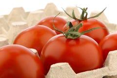 Pomodori freschi in un cassetto Immagine Stock