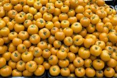 Pomodori gialli fotografie stock