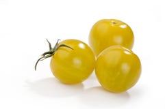 pomodori gialli Fotografia Stock Libera da Diritti