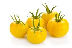 Pomodori gialli Fotografia Stock