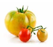 Pomodori gialli e rossi bagnati maturi isolati su bianco Fotografia Stock