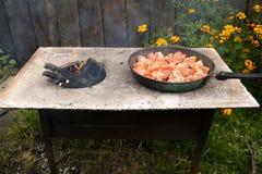 Pomodori grigliati sopra un fuoco aperto Immagine Stock