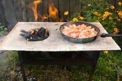 Pomodori grigliati sopra un fuoco aperto Fotografie Stock Libere da Diritti