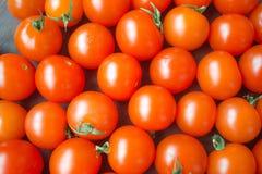 Pomodori herry del ¡ di Ð fotografia stock libera da diritti