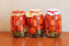 Pomodori inscatolati Immagini Stock