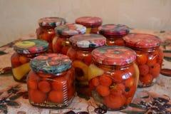 Pomodori inscatolati rosso Fotografia Stock Libera da Diritti