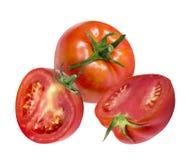 Pomodori isolati su bianco Immagini Stock