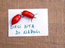 Pomodori italiani - Dieci Dita di Napoli Fotografia Stock