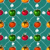 Pomodori LUMINOSI. verdure saporite Immagini Stock Libere da Diritti