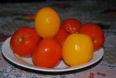 Pomodori marinati casalinghi sulla tavola immagine stock