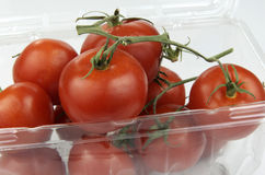 Pomodori maturati vite in recipiente di plastica Immagine Stock Libera da Diritti