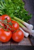 Pomodori maturi con le erbe Fotografia Stock Libera da Diritti