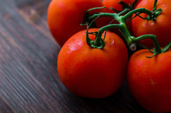 Pomodori maturi della vite organica sulla tavola di legno Immagine Stock Libera da Diritti