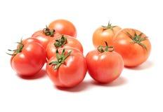 Pomodori maturi freschi Immagine Stock Libera da Diritti