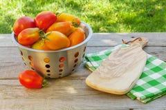 Pomodori maturi freschi Immagini Stock Libere da Diritti