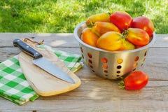 Pomodori maturi freschi Fotografie Stock