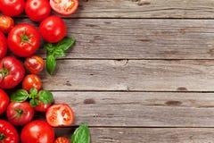 Pomodori maturi freschi del giardino Fotografia Stock