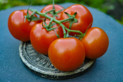 Pomodori maturi rossi freschi Immagine Stock