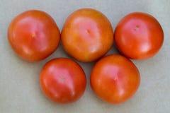 Pomodori maturi sotto forma di anelli olimpici Fotografia Stock
