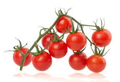 Pomodori maturi su fondo bianco Fotografia Stock