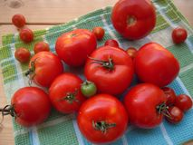 Pomodori maturi su un asciugamano di cucina immagini stock
