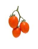 Pomodori maturi su una priorità bassa bianca Immagine Stock Libera da Diritti