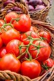 Pomodori maturi succosi in un canestro Fotografia Stock Libera da Diritti