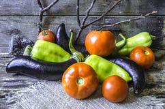 Pomodori, melanzana e peperoni maturi sopra dei bordi bruciati Fotografia Stock