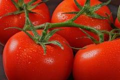 Pomodori nel mazzo Fotografie Stock Libere da Diritti