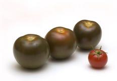 Pomodori neri su bianco Fotografia Stock Libera da Diritti