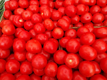 Pomodori organici Fotografia Stock