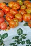 Pomodori organici di heirloom al servizio del coltivatore Fotografie Stock