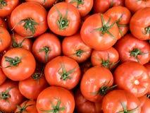 Pomodori organici freschi rossi sul mercato degli agricoltori Fondo del pomodoro del primo piano Alimento sano del vegano fotografia stock