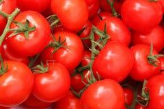 Pomodori organici in un mucchio Fotografia Stock