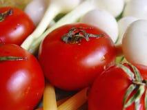 Pomodori, pasta, cipolla Immagine Stock