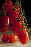 Pomodori Plumb immagini stock
