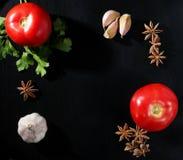 Pomodori, prezzemolo, anice stellato ed aglio Fotografia Stock Libera da Diritti