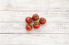Pomodori Ramo dei pomodori Fotografia Stock Libera da Diritti
