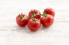 Pomodori Ramo dei pomodori Immagine Stock