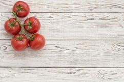 Pomodori Ramo dei pomodori Fotografia Stock