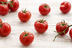 Pomodori Ramo dei pomodori Fotografie Stock
