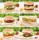 Pomodori rassodati della cipolla del manzo del cheeseburger della raccolta dell'hamburger Immagine Stock