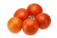 Pomodori rossi Immagini Stock Libere da Diritti