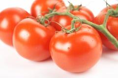 Pomodori rossi Fotografia Stock