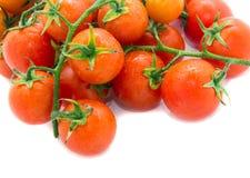 Pomodori rossi Immagine Stock