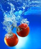 Pomodori rossi in acqua immagine stock